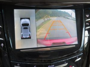 Backup-Birdseye View Camera